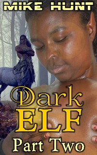 Cover Dark Elf - Part Two