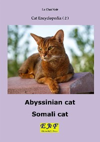 Cover Abyssinian cat - Somali cat