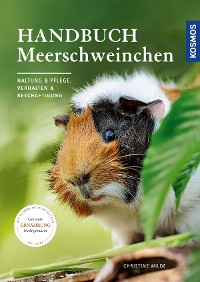 Cover Handbuch Meerschweinchen