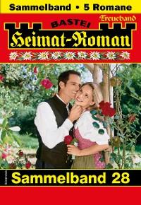 Cover Heimat-Roman Treueband 28