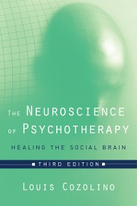 Cover The Neuroscience of Psychotherapy: Healing the Social Brain (Third Edition)  (Norton Series on Interpersonal Neurobiology)