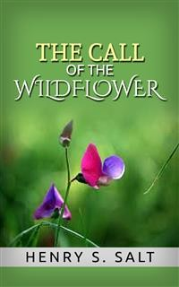 Cover The Call of the Wildflower