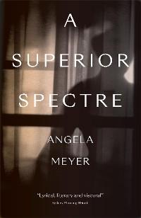 Cover A Superior Spectre