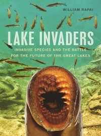 Cover Lake Invaders