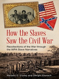 Cover How the Slaves Saw the Civil War