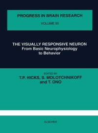 Cover Visually Responsive Neuron