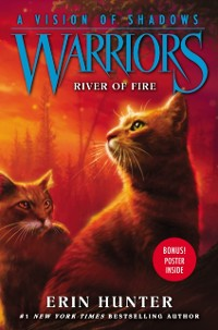 Cover Warriors: A Vision of Shadows #5: River of Fire