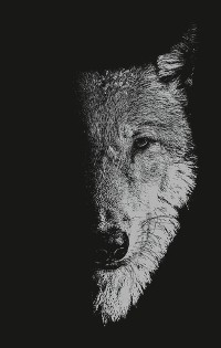 Cover In the company of wolves