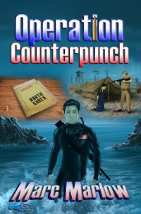 Cover Operation Counterpunch