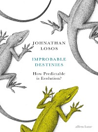 Cover Improbable Destinies