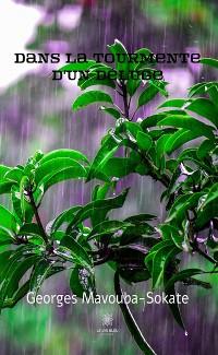 Cover Dans la tourmente d'un déluge