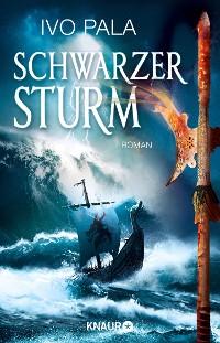 Cover Schwarzer Sturm