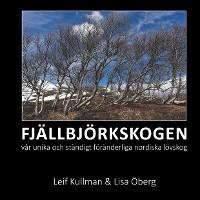 Cover FJÄLLBJÖRKSKOGEN