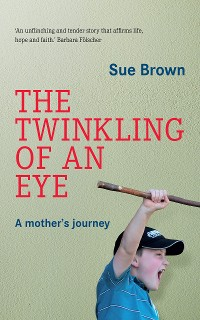 Cover The Twinkling of an Eye
