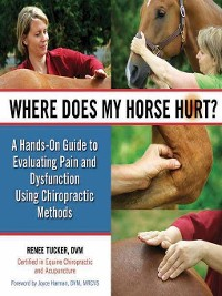Cover Where Does My Horse Hurt?