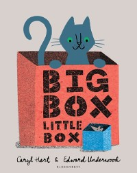 Cover Big Box Little Box