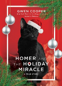 Cover Homer and the Holiday Miracle
