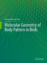 Cover Molecular Geometry of Body Pattern in Birds