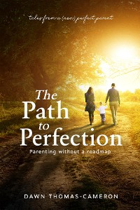 Cover The Path to Perfection: Parenting without a roadmap