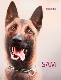 Cover SAM
