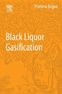 Cover Black Liquor Gasification