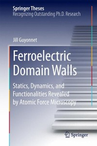 Cover Ferroelectric Domain Walls