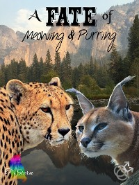 Cover A Fate of Meowing & Purring