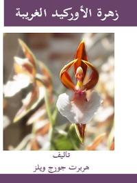 Cover زهرة الأوركيد الغريبة