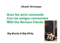 Cover Avec les amis normands