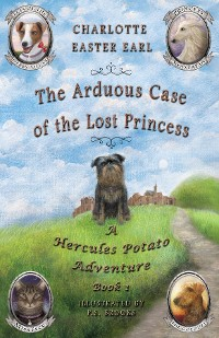 Cover The Arduous Case of the Lost Princess