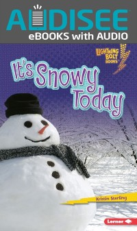 Cover It's Snowy Today