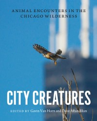 Cover City Creatures