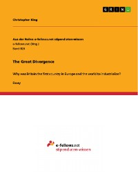 Cover The Great Divergence