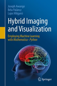 Cover Hybrid Imaging and Visualization