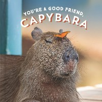 Cover You're a Good Friend, Capybara
