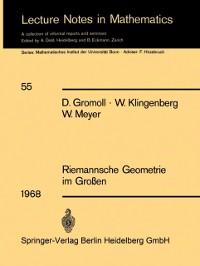 Cover Riemannsche Geometrie im Groen