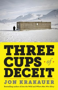 Cover Three Cups of Deceit
