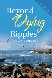 Cover Beyond Dying Ripples