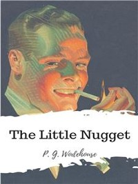 Cover The Little Nugget