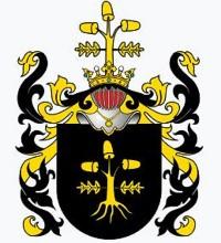 Cover The noble Polish family Piotrowski - kniaz (princes)