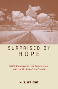 Cover Surprised by Hope Participant's Guide