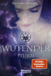 Cover Wütender Sturm (Die Farben des Blutes 4)
