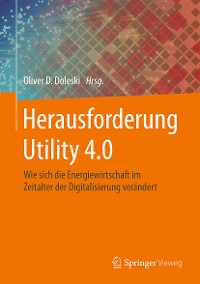 Cover Herausforderung Utility 4.0