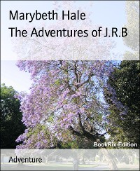 Cover The Adventures of J.R.B