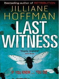 Cover Last Witness