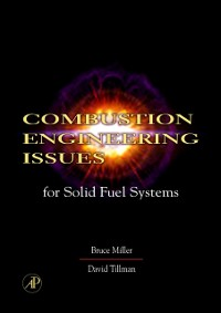 Cover Combustion Engineering Issues for Solid Fuel Systems