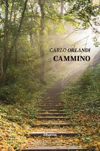 Cover Cammino