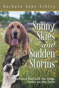 Cover Sunny Skies and Sudden Storms