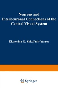 Cover Neurons and Interneuronal Connections of the Central Visual System
