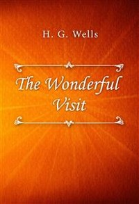 Cover The Wonderful Visit